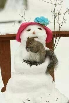 Squirrel feeder snowlady- what a cute way to help out the animals this winter.