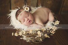 Heidi Hope http://www.heidihope.com/blog/newborn-baby-girl-a-rhode-island-newborn-portrait-photography-studio/