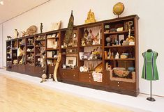 Mark Dion|Cabinets of curiosities - 2001, Weisman Art Museum, Minnesota