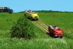 Die Halbinsel Jasmund erfreut sich für eine Erlebnistour seit Jahren großer Beliebtheit...