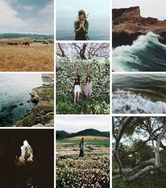Miss Moss : VSCO Grid - love all the strong natural elements in each picture