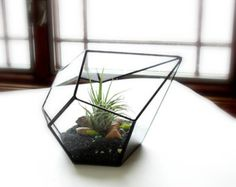Planter Eco Friendly Sacred Geometry Dodecahedron di MeshCloud