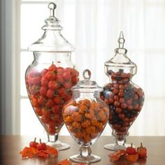 Glass Apothocary Jars from touchstone