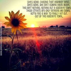 Cute little country sunflower Country Life, Country Girls, Country Summer Quotes, Country Music, Country Lyrics, Country Strong, Country Roads, Country Backgrounds, Lady Antebellum