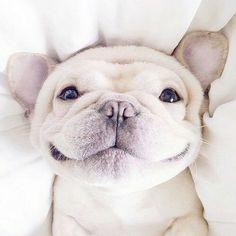 Beautiful Smile.