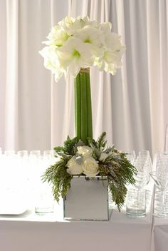 Amaryllis topiary Corporate flowers,  corporate flower centerpiece,  add pic source on comment and we will update it. www.myfloweraffair.com can create this beautiful flower look.