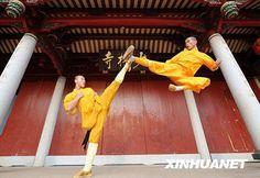Kung Fu Martial Arts - Learn more about New Life Kung Fu at newlifekungfu.com