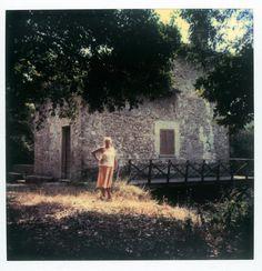 Polaroid by Andrei Tarkovsky Lot 14 - Polaroid 4