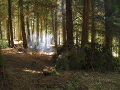 Dens and fires