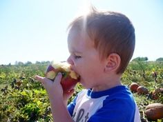 Picky Eaters: How to Expand and Diversify their Diets! | Healthy Ideas for Kids