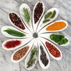 Las 230 plantas medicinales más efectivas y sus usos. - Lógica Ecológica
