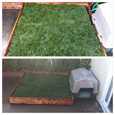 DIY Potty Patch for Riley!! With REAL grass! For about $60 in materials, I made this for the concrete patio at my new condo (vs similar ones online for $250+). It even has casters in case i need to move it for whatever reason. Now Riley has a patch of grass even if Bryan doesn't walk her!
