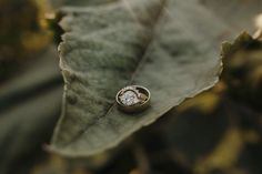 Nicole + Josh (Napa Valley, CA) - Jordan Voth   Seattle Wedding & Portrait Photographer