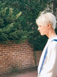 Read ♡ lee jeno ♡ from the story nct Nct 127, Taemin, Winwin, Jaehyun, Kpop, Jung Jin Woo, Nct Group, Face Profile, K Wallpaper