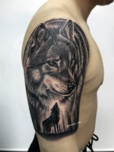 Lobo // Wolf