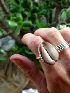 sterling silver cowrie shell bezel ring by MermaidManaMaui on Etsy