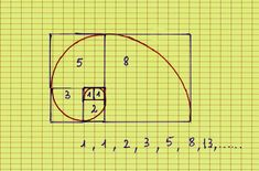 Fibonacci's spiral and sequence. I remember this! Oh I miss math class