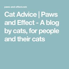 Cat Advice | Paws and Effect - A blog by cats, for people and their cats
