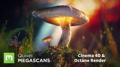 Alexander Maltsev shows how he made this award-winning project using Megascans and Cinema 4D, rendered in Octane and composited in Blackmagic Fusion. In thi...