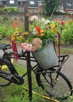 De Torentuin: Groen en gezellig http://cashewstadstuinieren.nl/de-torentuin-groen-en-gezellig/