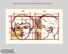 Teen female head proportions ratio