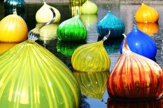 Those amazing glass onions...on display at the Missouri Botanical Garden.