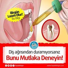 Diş ağrısından duramıyorsanız bunu mutlaka deneyin - Faydalı Bilgin - Mobil
