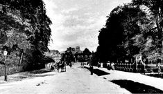 Trumpington Road only horses and carts a century earlier in Victorian times Cambridge, England, Victorian, Horses, Times, History, World, Outdoor, Places