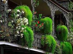 "New Orleans - French Quarter ""Cast-Iron Balcony & Floral Baskets"""