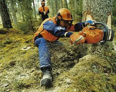 Working with a Husqvarna #chainsaw in the field.