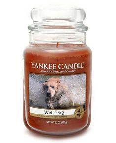 Yankee candle wet dog