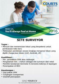 Site Surveyor.jpg