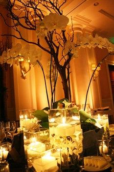 simple orchid center piece
