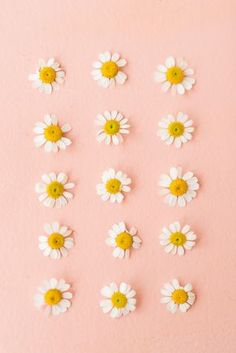 58 Ideas For Flowers Photography Wallpaper Backgrounds Spring - - Cute Backgrounds, Phone Backgrounds, Cute Wallpapers, Wallpaper Backgrounds, Spring Backgrounds, Vintage Flower Backgrounds, Screen Wallpaper, Flower Wallpaper, Iphone Wallpaper