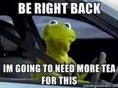 Lol. Kermit the Frog memes