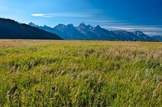 Grand Teton National Park is a true outdoor-lovers' paradise. Few views can parallel the Tetons towering over the Snake River Valley, an image that always evokes the mythical American West like few others ever can. And what could be better than camping in this incredible wilderness. Campgrounds included in this eTrail are: Gros Ventre, Jenny Lake, Signal Mountain, Colter Bay, and Lizard Creek.