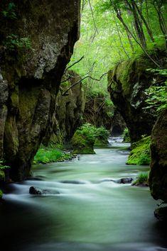 Tarumae Garo Gorge, Hokkaido, Japan #緑 #Green 樽前ガロー