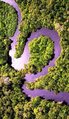 Amazonas Rio, Brasil                                                                                                                                                     Más