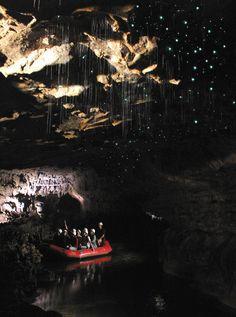 Luminescent Glowworms Illuminate Caves in New Zealand - My Modern Metropolis