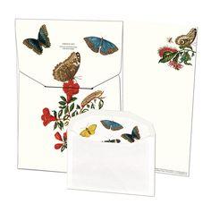 Insecten, Maria Sibylla Merian | Kirjepaperisetti Perfect Peacock, Sibylla Merian, Letter Writer, Cute Envelopes, Wrendale Designs, 10 Envelope, Kawaii Stationery, Kawaii Shop, Letter Set