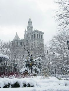 City Hall Park, Manhattan to go to NYC in winter next time and ice skate in Central Park Central Park, New York Central, Parks, New York City Hall, New York Winter, I Love Nyc, Upstate New York, Best Cities, Adventure Is Out There
