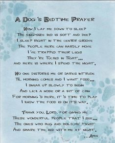 Winston Porter 'A Dog's Bedtime Prayer' Textual Art Dog Poems, Dog Quotes, Animal Quotes, Funny Quotes, Animal Poems, Funny Poems, I Love Dogs, Puppy Love, Cute Dogs