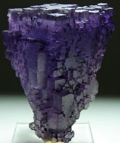 Fluorite | ©madmineralz.com Cave-in-Rock, Illinois, US. Fluorite is a halide mineral (calcium fluoride) found as a common gangue mineral in hydrothermal veins, especially those containing lead and zinc minerals. It is also found in cavities in sedimentary rocks; as a cementing material in sandstones; and as hot springs deposits. Fluorite forms isometric crystals, usually cubes, less often octahedrons, and rarely dodecahedrons. Also some hexoctahedrons and tetrahexahedrons. Combinations of…