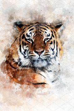 Tiger - watercolor illustration port by byrdyak on Watercolor Tiger, Tiger Painting, Watercolor Animals, Watercolor Portraits, Watercolor Paintings, Watercolor Landscape, Abstract Paintings, Oil Paintings, Painting Art