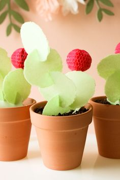 DIY Edible Cactus Dessert! Bring your Taco Tuesday to an entirely new level!