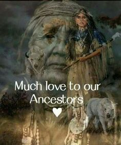 White buffalo calf Spiritual Native Wisdom Art t Buffalo Native American Cherokee, Native American Girls, Native American Wisdom, Native American Pictures, Native American Beauty, American Indian Art, American Symbols, American Indians, Native American Paintings