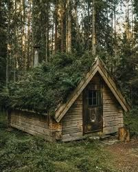 hut wood Hut in the woods | Кабина, Лесной дом, Деревенский коттедж Cabins And Cottages, Cabin Fever, Tiny House, Small Houses, Copenhagen, House Styles, Places, House Inspirations, Instagram