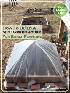 How To Build A Mini Greenhouse For Early Planting #greenhouseideas
