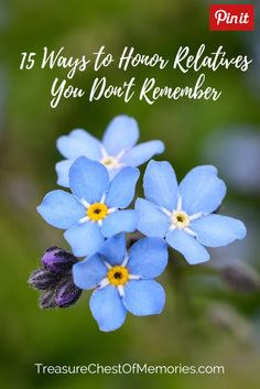 Relatives you don't remember Graphic with Forget me nots