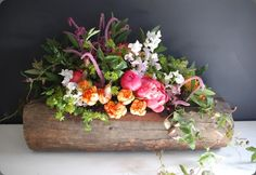 beautiful, from Foret--they have other floral masterpieces--see their website. All Flowers, My Flower, Fresh Flowers, Wedding Flowers, Flower Ideas, Spring Flowers, Log Centerpieces, Succulent Centerpieces, Centrepieces